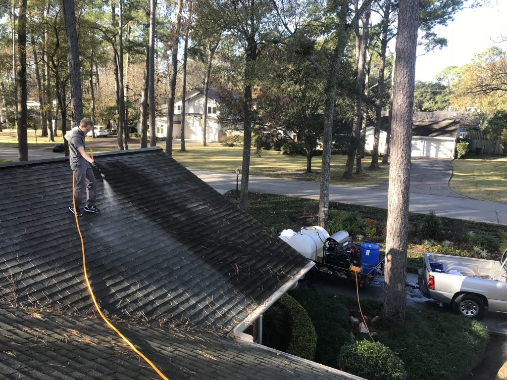 Does Your Roof Need Cleaning This Year?